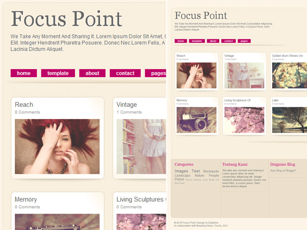 20 Most Beautiful Blogger Templates 2013