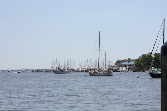 Chesapeake Bay in Annapolis