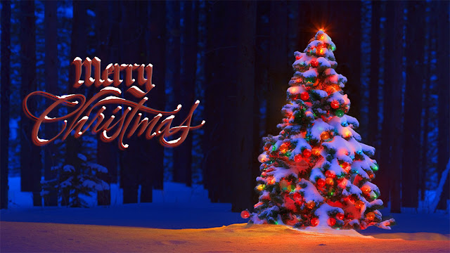 Merry xmas 2016 Christmas Google Plus Covers Banners