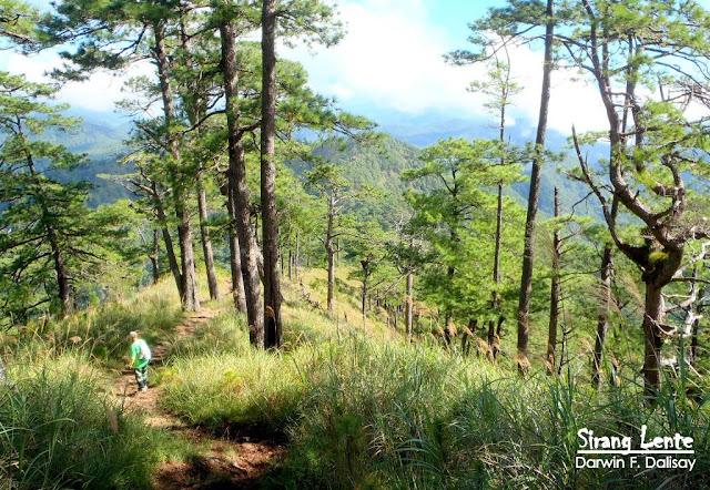 Mt. Ugo Trail