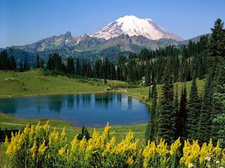Ομορφιά, πράσινο, δάσος, βουνό, φύση, ταξίδι, περίπατος, ορειβασία