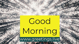 Good-Morning-Natural-Greetings-Live