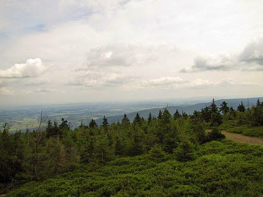 Widok ze Stogu Izerskiego na Pogórze Izerskie.