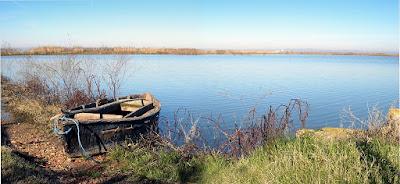 Medio Ambiente desarrolla actuaciones de prevención de la Flora Acuática invasora en el parque natural de Pego-Oliva