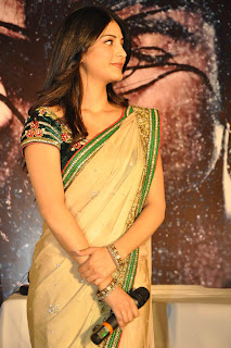 Shruthi Han Pictures in Saree at 3 Movie Audio Launch