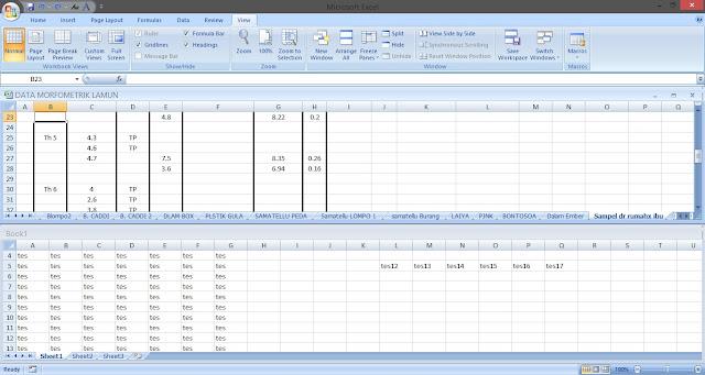 Cara menggunakan Split Widows dan View Side by Side di Excel