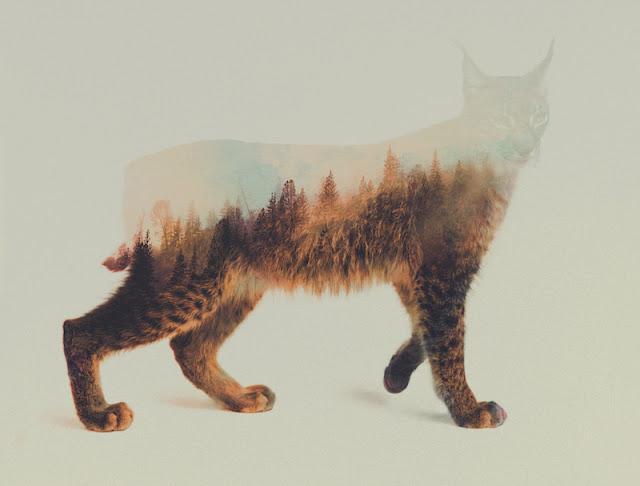 Ilustración animal fusionado con paisaje de Noruega