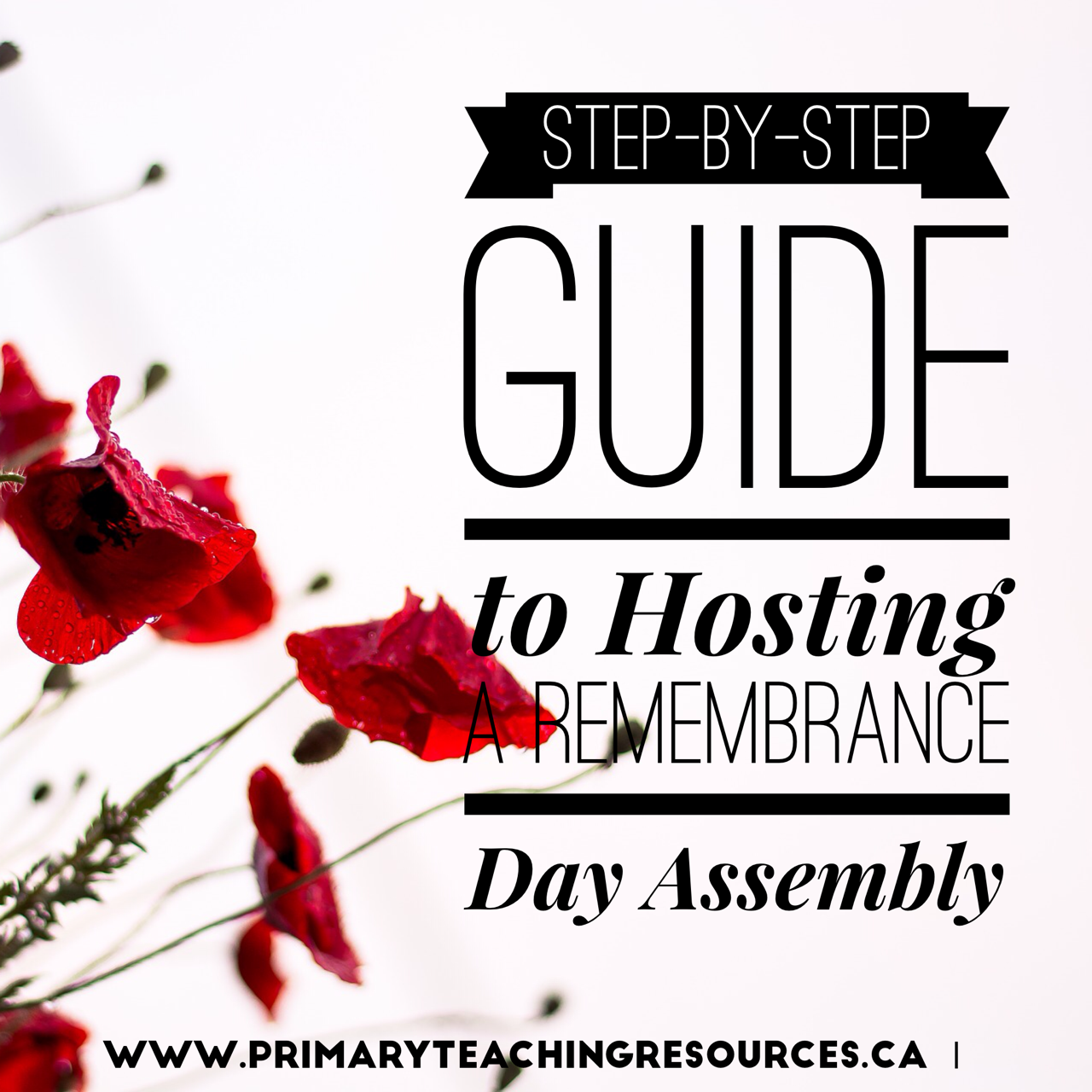 remembrance day assembly ideas primary teaching resources