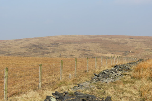 A line of fence cutting across the moors, with the expanse of White Hill lying across the horizon.