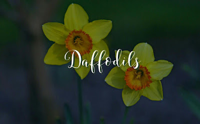 William Wordsworth Daffodils