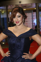 Payal Ghosh aka Harika in Dark Blue Deep Neck Sleeveless Gown at 64th Jio Filmfare Awards South 2017 ~  Exclusive 104.JPG