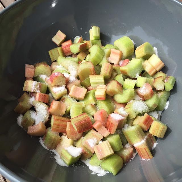 Morceaux de rhubarbe saupoudrés de sucre