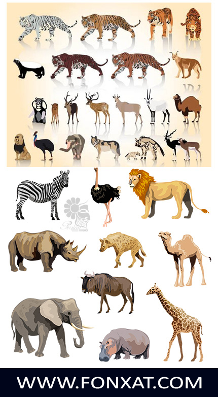 Download vector illustrations zoo animals, elephant, giraffe, lion, zebra