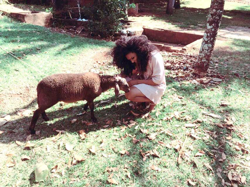 Simone Sampaio matou a saudade do contato com os animais. Foto: Renato Cipriano