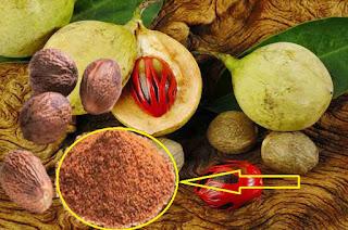 Manfaat biji pala untuk kesehatan