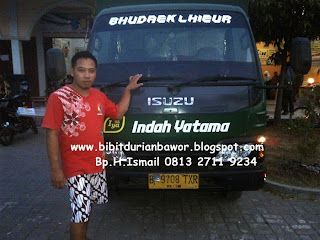 http://4.bp.blogspot.com/-aowPAr_0V4Y/U7UxisQINoI/AAAAAAAADWM/4iVtfwsejdQ/s1600/bibitdurianbawor2.jpg