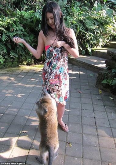 [FOTO] Kemben Dipeloroti Monyet Bali, Gadis Taiwan Mendadak Ngetop
