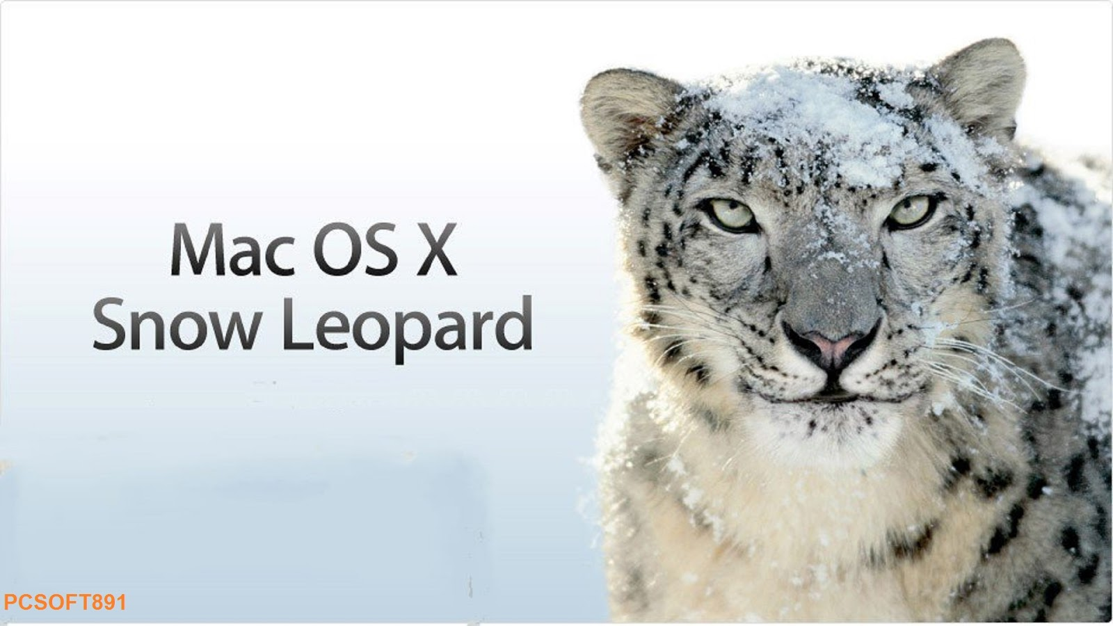 Pcsoft891: Mac OS X Snow Leopard Free Download