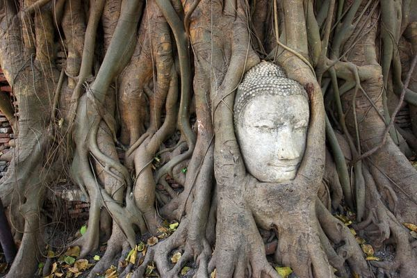 Ayutthaya Historical Park, UNESCO World Heritage, Tourism Authority of Thailand, Copyright 2011