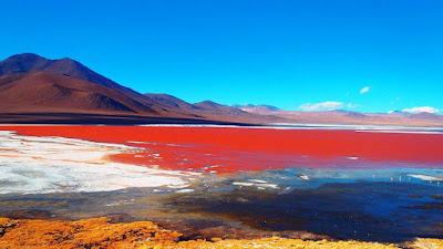 Kumpulan Informasi danau unik dan menarik di dunia, Danau Colorada Bolivia Red Lagoon
