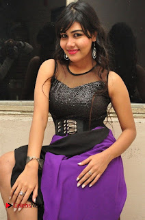 Telugu Actress Rachana Smith Stills at Money is Honey Audio Release  0014.jpg