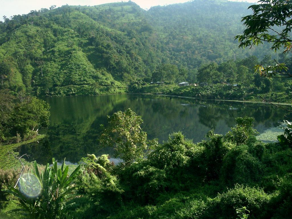 Natural beauty bangladesh essay help