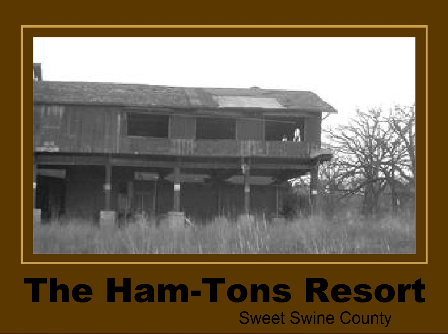 "The Famous ""Ham-Tons Resort"" Adds New Amenities!!"