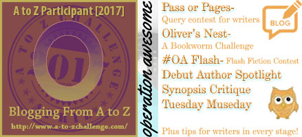 #AtoZchallenge 2017 Operation Awesome Own Your Next Writing Session