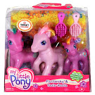 My Little Pony Toola-Roola Rainbow Ponies Bonus G3 Pony