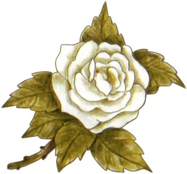 best Laminas De Flores Blancas Para Imprimir image collection