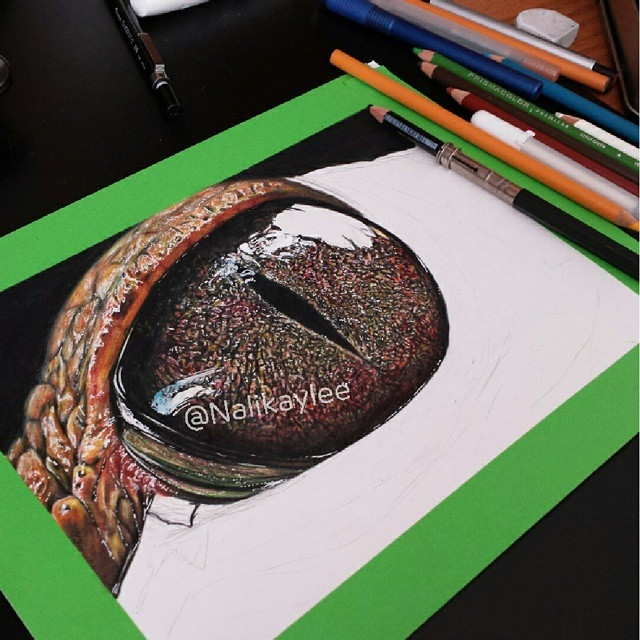 04-Alligator-Eye-WIP-Kaylee-Yang-nalikaylee-Realistic-Drawings-which-Include-Animals-and-Objects-www-designstack-co