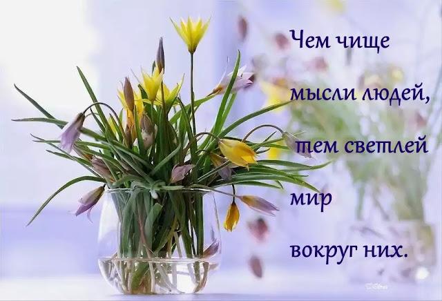 Л. Стрельникова
