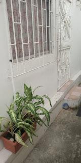 Hostal en Guayaquil - Habitación  de 20 metros cuadrados - Entrada