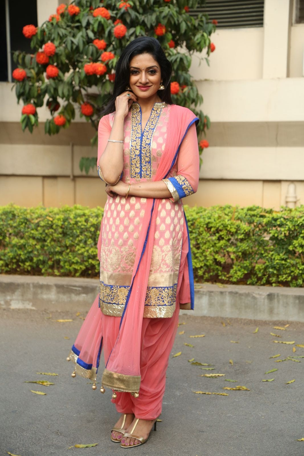vimala raman new glam pics-HQ-Photo-12