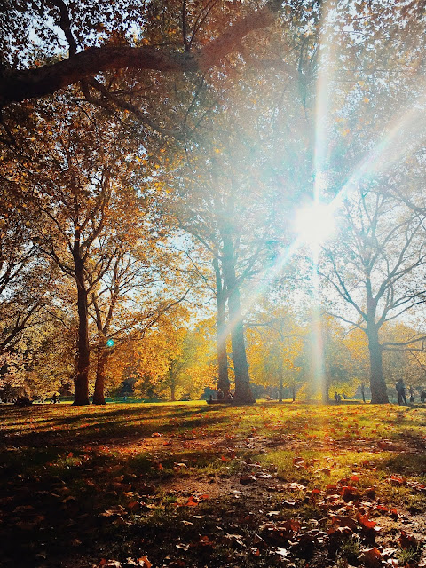 10 autumn picture perfect spots in London