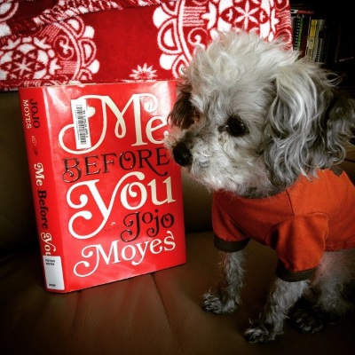 Murchie sits on a beige leather chair with a fuzzy red and white blanket draped over the back. He wears his orange t-shirt and has his paws shoulder width apart. Behind him is a hardcover copy of Me Before You. Its cover features the title and author's name in white and black text, alternating by word, against a red background.