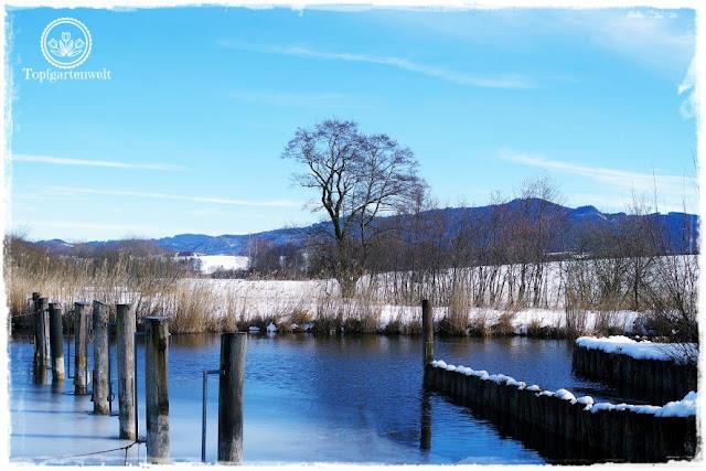 Gartenblog Topfgartenwelt Wallersee: Winterstimmung Eis Bootsplatz Handlechner