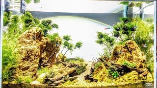 Desert Dry Creek   A U Style Layout By Dave From ADU Aquascaping