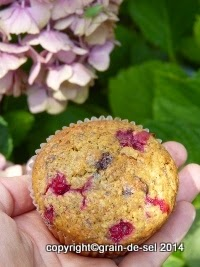 http://salzkorn.blogspot.fr/2014/08/johannisbeer-muffins-mit-quark-und.html