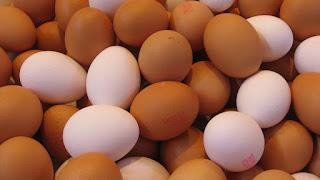 cara hilangkan kelemumur minyak zaitun dan telur
