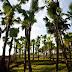 Phú Thọ: Những địa điểm du lịch tuyệt đẹp bạn không thể bỏ qua