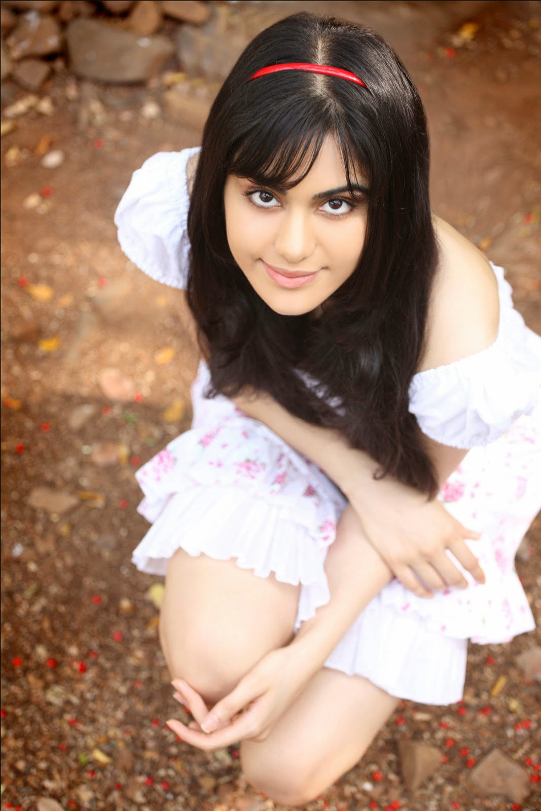 Animals In Suits Wallpaper Adah Sharma Hd Wallpapers Hd Wallpapers High Definition