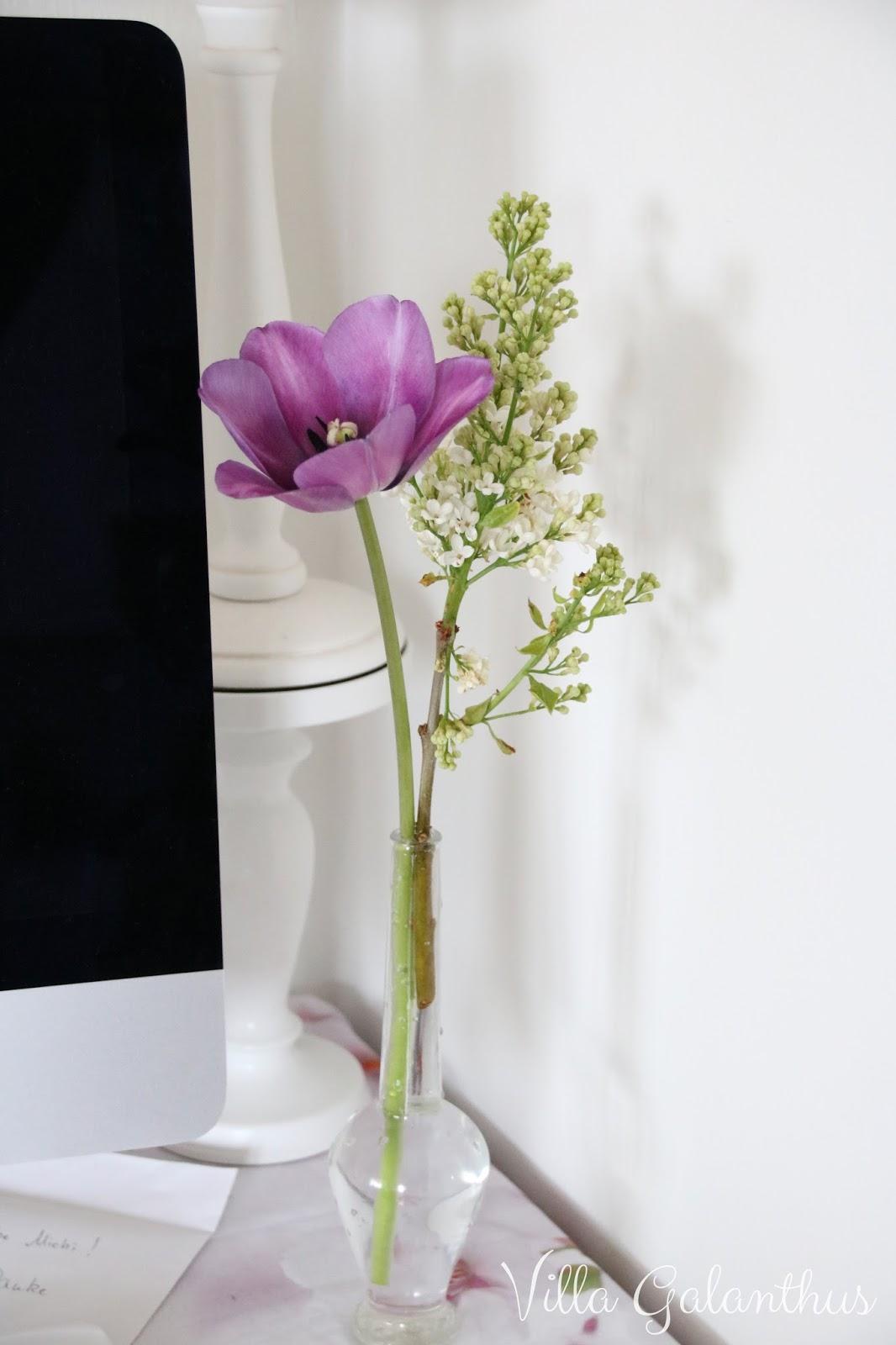 friday fliederzeit in der neuen arbeitsecke villa galanthus. Black Bedroom Furniture Sets. Home Design Ideas