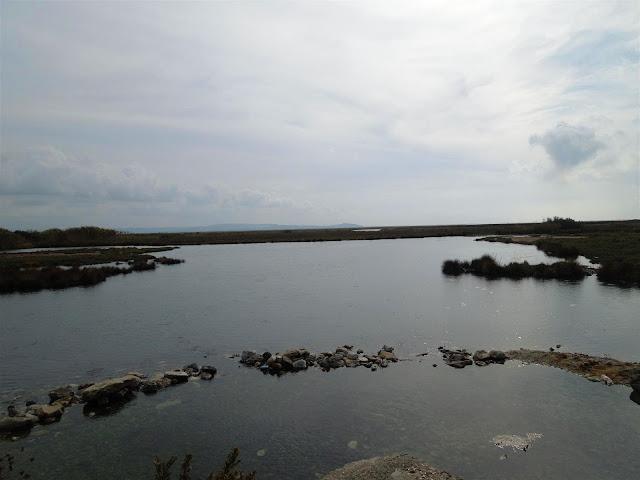 Menderes'in sulak alanlarından
