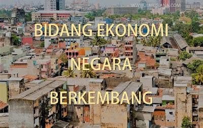 bidang kegiatan ekonomi negara berkembang