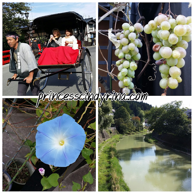 grapes and trishaw in Japan
