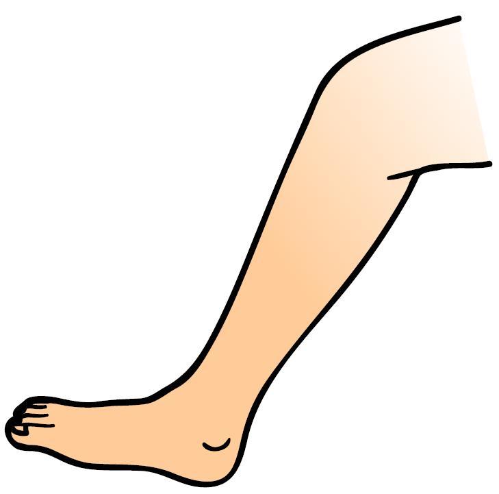 mewarnai gambar tangan dan kaki mewarnai terbaru