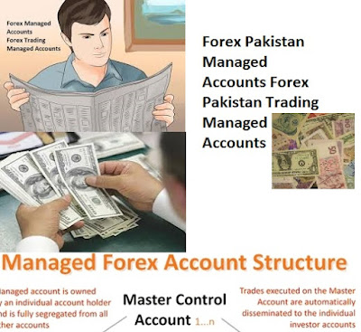 Professionally managed forex accounts