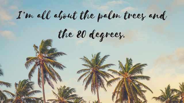 summer palms wallpaper