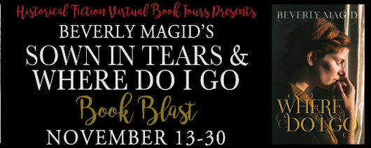 HFVBT Presents : Beverly Magid's Book Blast from November 13 - 30